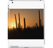 Saguaro Sunset iPad Case/Skin