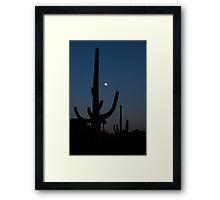 Saguaro Sleeping Framed Print