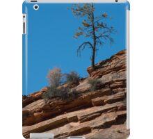 Lonesome Pine iPad Case/Skin
