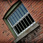Window by meresoftwilight