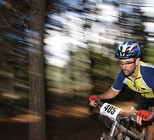 Pine Forest Dash by fotosports