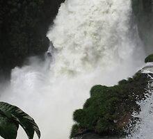 Iguazu Falls by kjcasey