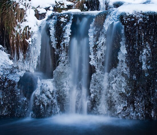 Frozen Falls by Thomas Fitzgerald