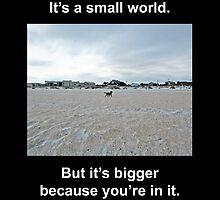 Small World by John Sheirer