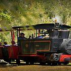 Australian Sugarcane Railway by myraj