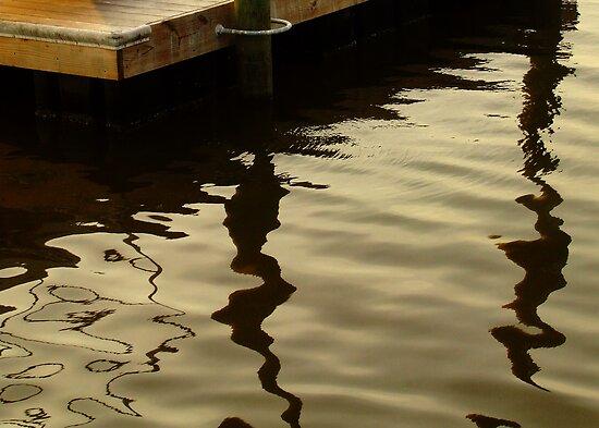 Tidal Creek by Lee Donavon Hardy