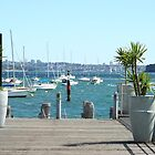 View from Manly jetty by Maggie Hegarty