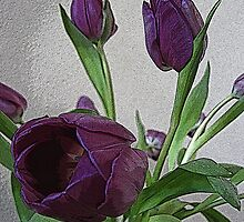 Pretty Purple Tulips by MichelleR