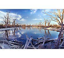 Lyrup Flats Log Jam Photographic Print
