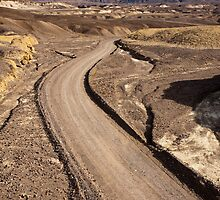 Dirt Road in Death Valley by Nickolay Stanev