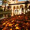 Alhambra Palace Autumn Granada Spain by Les Meehan
