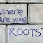 where are your roots by christopher  bailey