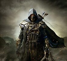 The Elder Scrolls V - Skyrim Assassin 2.0 by ghoststorm