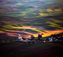 View from Steptoe Butte by Olga Zvereva