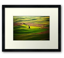 Silky Green Framed Print
