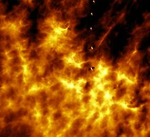 Phoenix - or Phoenii? by Phoenix-Appeal