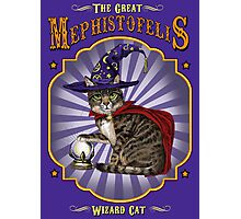 The great wizard cat Photographic Print