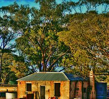St Arnaud reservior house by Jennifer Craker