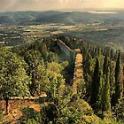 View from Cortona fortress by bennystoors