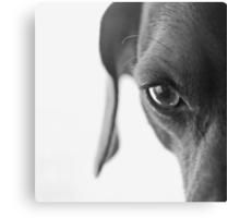 animal instinct Canvas Print