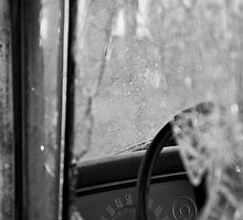 Speedometer by Margaret  Clemmer