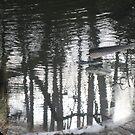 Reflections II by sendao