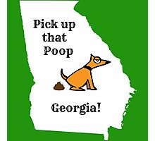 Dog poop by state - Georgia Photographic Print