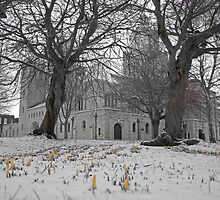 Portsmouth Cathedral by Zoe Harmer