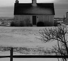 Desolation by Jeff Newell