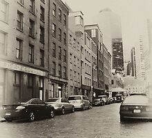Old New Manhattan by carlina999