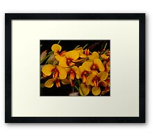 Eggs and Bacon Pea Framed Print