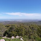 From Mt. Lofty to the Sea. Adelaide Hills. S. Aust.  by Rita Blom