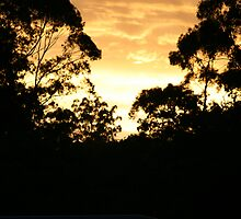 Sunset at Fountain caravan park by conorsmum