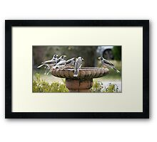 What !  - You Forgot the Soap ? Framed Print