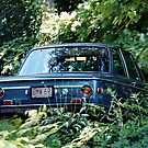 BMW 2002 by Roc Ahrensdorf