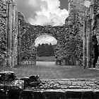 Lilleshall Abbey by David J Knight