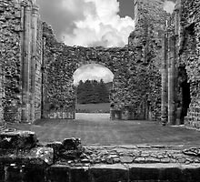 Lilleshall Abbey by Aggpup
