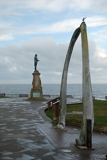 Captain James Cook,  and the whalebone arch. by dougie1