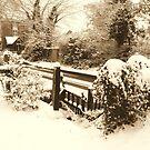 Garden Gate by karenlynda