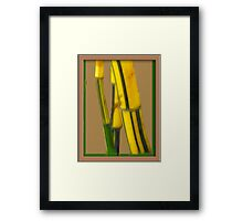 Nature's Steel  Framed Print