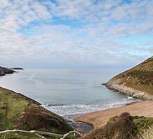 Pretty Beach Landscape by Janet Jenkins