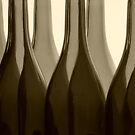 Wine Bottles in Sepia by Barbara  Brown