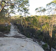 Huge rocks of the Great Dividing Range, around Charters Towers, Nth Qld. Australia by Marilyn Baldey