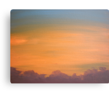 Two - donated to agencies responding to the Black Saturday bushfires Canvas Print