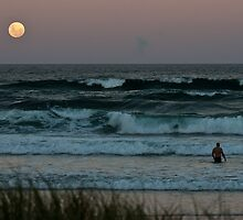 Moonlight Dip by RhondaR