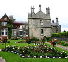 Muckross House by smallan