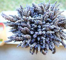 lavender by dydydada
