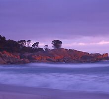 Binalong Bay at dawn by Erik Schlogl