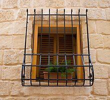 Window by Christian  Zammit