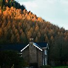 House Under The Hill by andymcgeechan